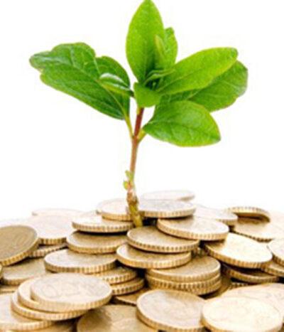 کسب درآمد از کشاورزی